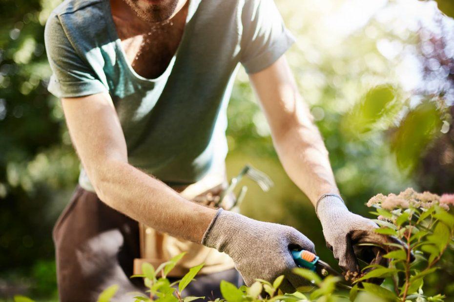 guide-jardinage